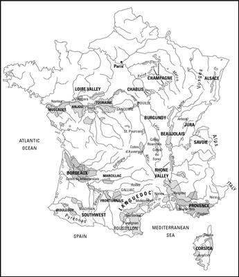 Variedades de uva cultivadas en Francia