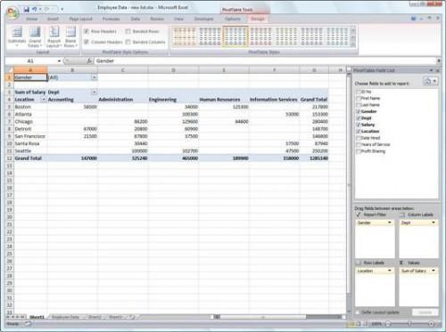 Crear una tabla dinámica en Excel 2007